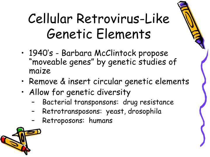 Cellular Retrovirus-Like Genetic Elements
