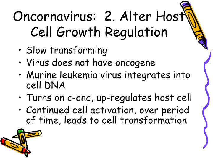 Oncornavirus:  2. Alter Host Cell Growth Regulation