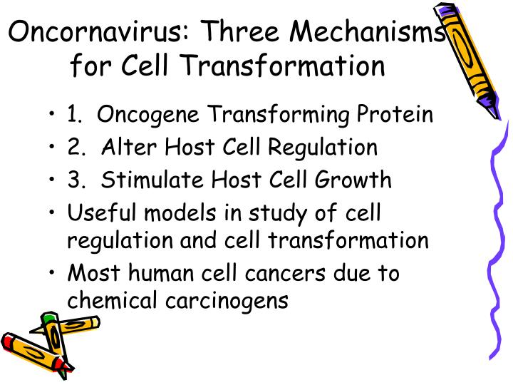 Oncornavirus: Three Mechanisms for Cell Transformation