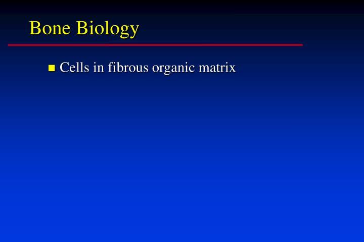 Bone Biology