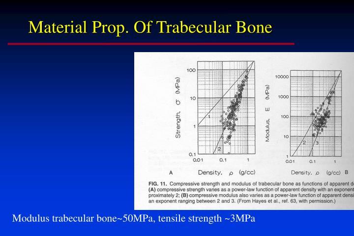 Material Prop. Of Trabecular Bone