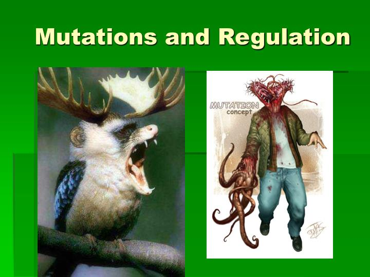 Mutations and regulation