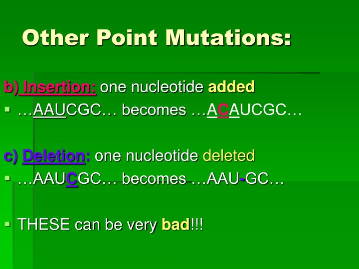 Other Point Mutations: