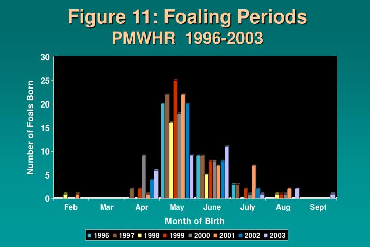 Figure 11: Foaling Periods