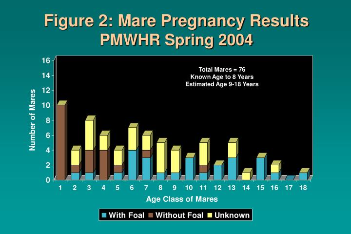 Figure 2: Mare Pregnancy Results