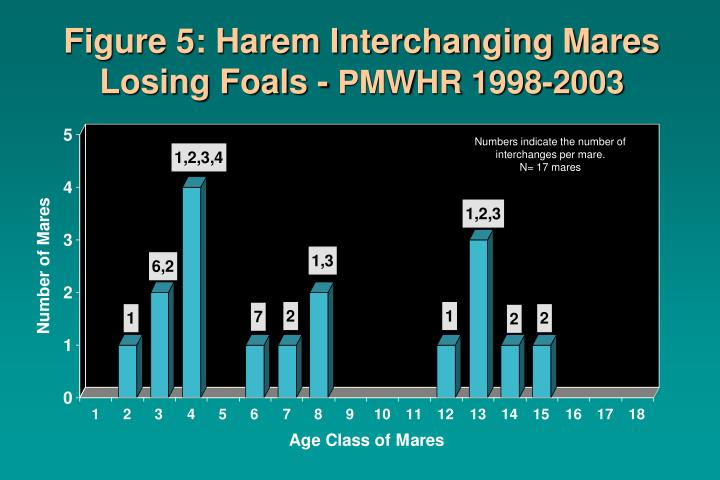 Figure 5: Harem Interchanging Mares Losing Foals -