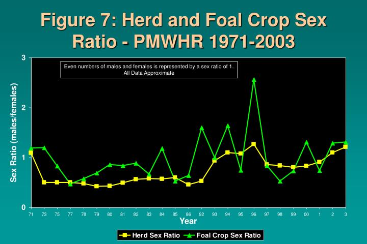Figure 7: Herd and Foal Crop Sex Ratio - PMWHR 1971-2003