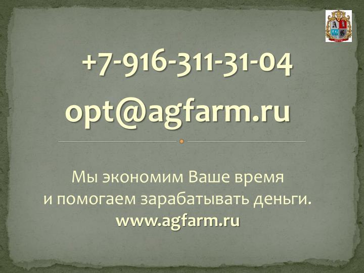 +7-916-311-31-04