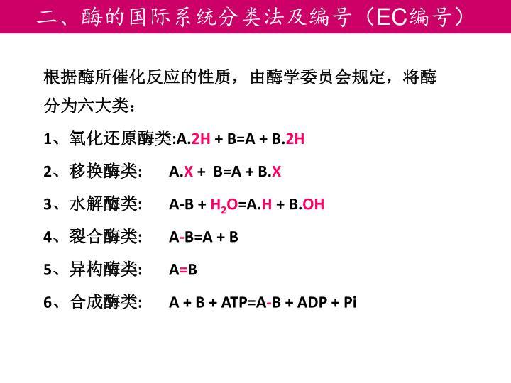 二、酶的国际系统分类法及编号(