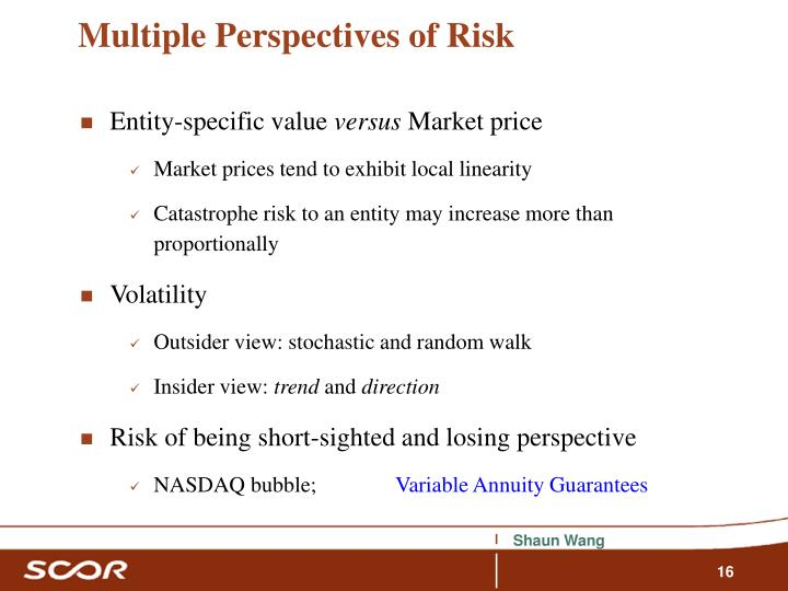 Multiple Perspectives of Risk