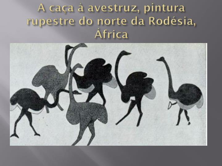 A caça à avestruz, pintura rupestre do norte da Rodésia, África