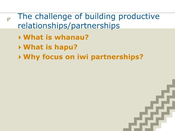 The challenge of building productive relationships/partnerships