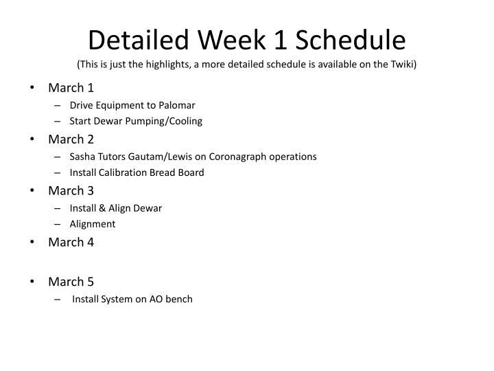Detailed Week 1 Schedule