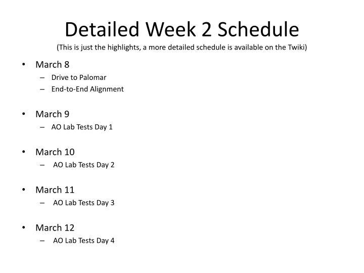 Detailed Week 2 Schedule