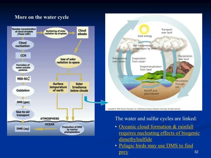 More on the water cycle