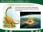 extinct reptiles the dinosaurs
