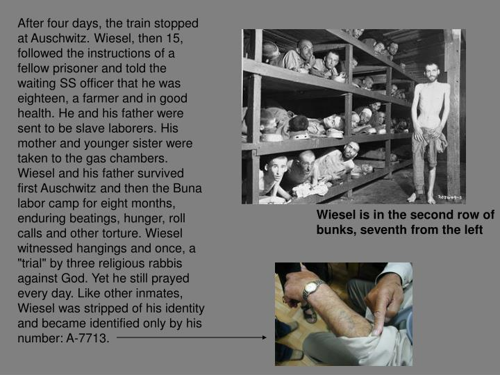 "After four days, the train stopped at Auschwitz. Wiesel, then 15, followed the instructions of a fellow prisoner and told the waiting SS officer that he was eighteen, a farmer and in good health. He and his father were sent to be slave laborers. His mother and younger sister were taken to the gas chambers. Wiesel and his father survived first Auschwitz and then the Buna labor camp for eight months, enduring beatings, hunger, roll calls and other torture. Wiesel witnessed hangings and once, a ""trial"" by three religious rabbis against God. Yet he still prayed every day. Like other inmates, Wiesel was stripped of his identity and became identified only by his number: A-7713."