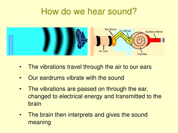How do we hear sound?
