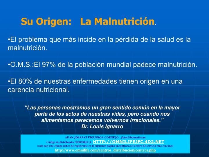 Su Origen:   La Malnutrición