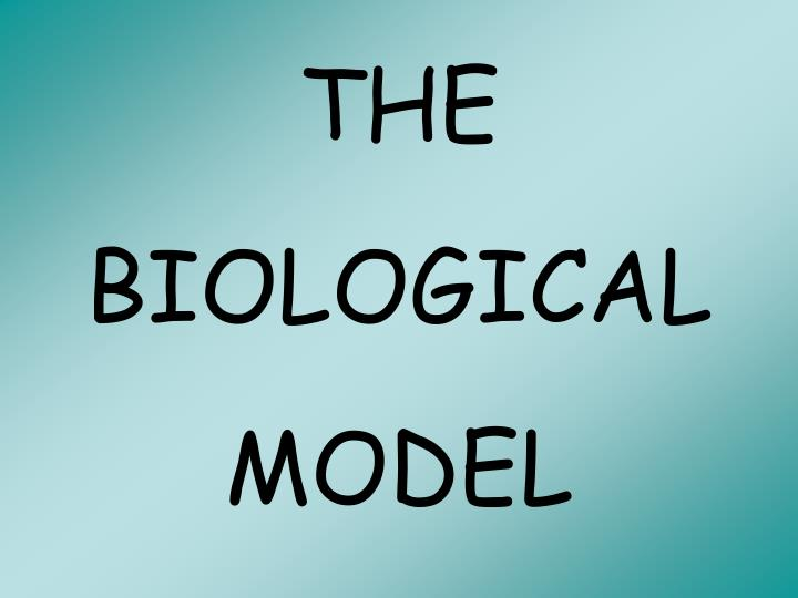 THE BIOLOGICAL MODEL