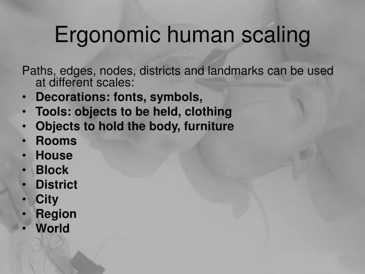 Ergonomic human scaling