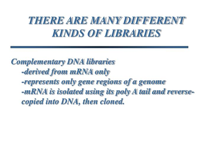 THERE ARE MANY DIFFERENT KINDS OF LIBRARIES