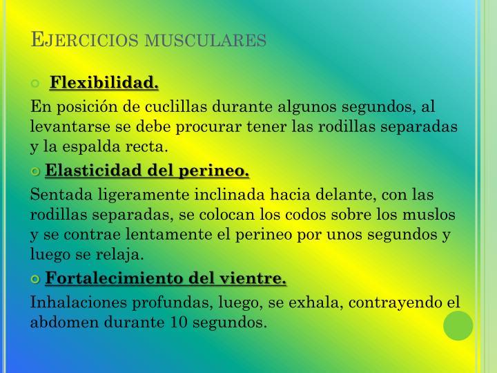 Ejercicios musculares