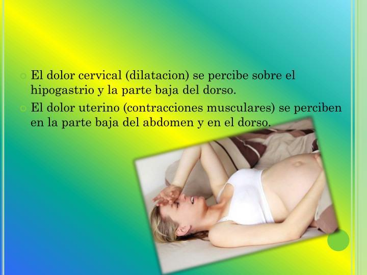 El dolor cervical (