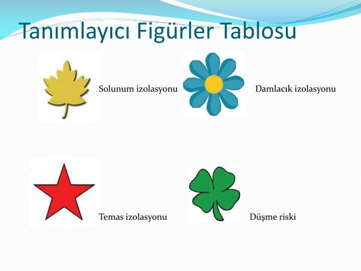 Tanmlayc Figrler Tablosu