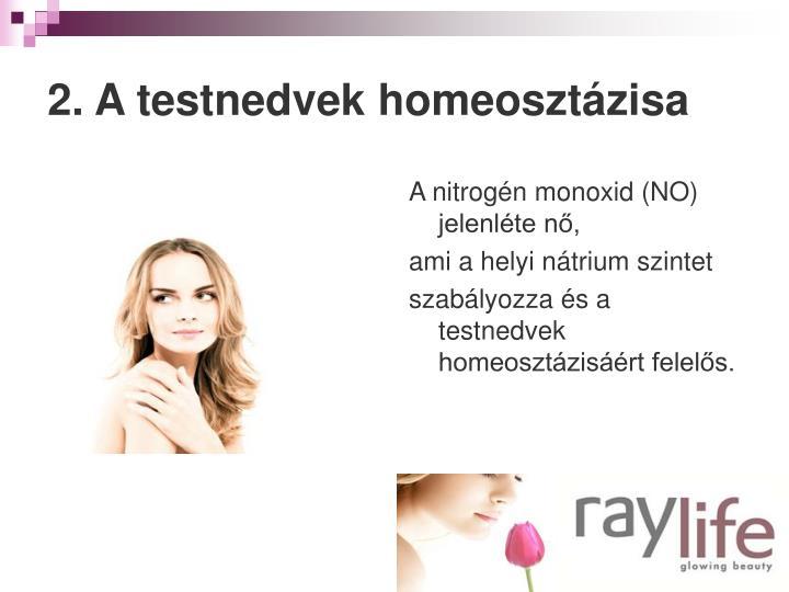 2. A testnedvek homeosztázisa