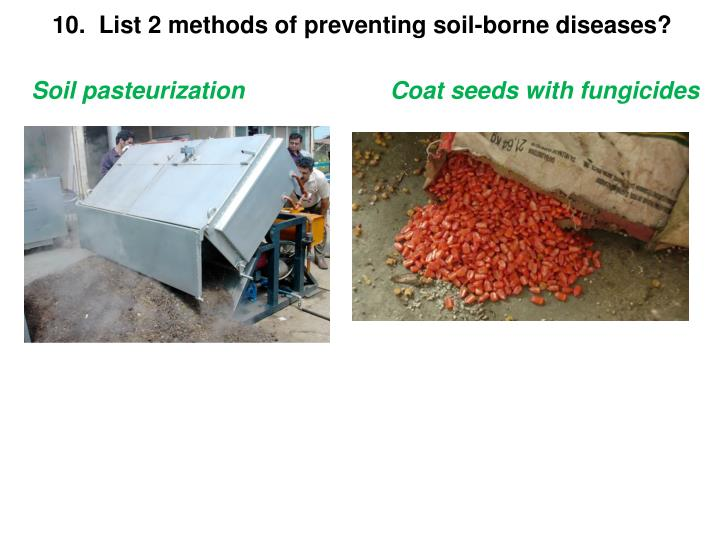 Ppt plant disease powerpoint presentation id 6203089 for Soil borne diseases