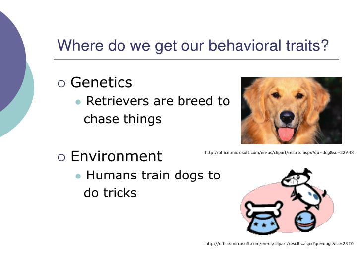 Where do we get our behavioral traits?
