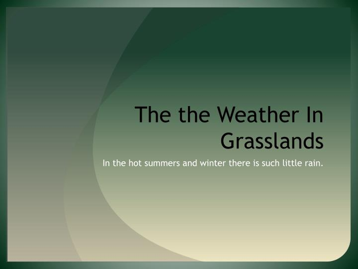The the Weather In Grasslands
