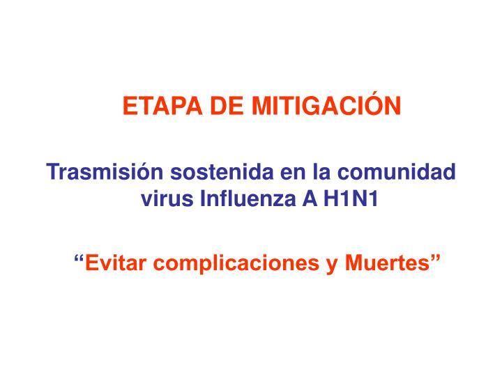 ETAPA DE MITIGACIÓN