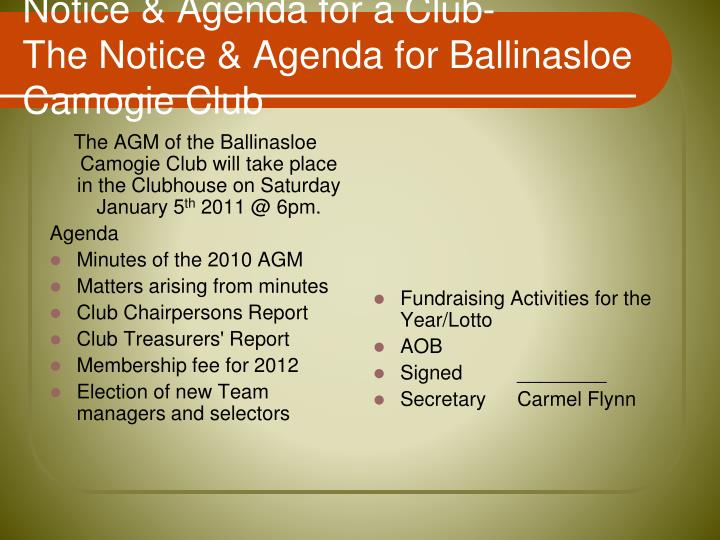 The AGM of the Ballinasloe Camogie Club will take place in the Clubhouse on Saturday January 5