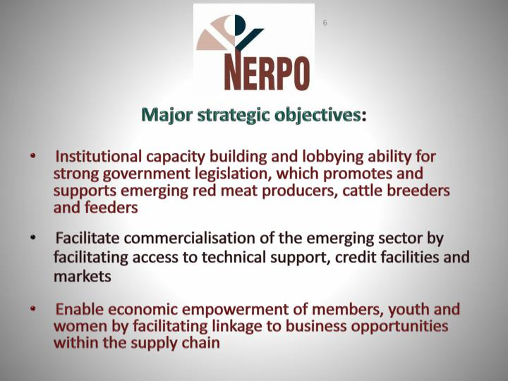 Major strategic objectives