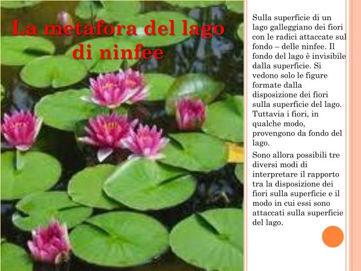 Sulla superficie di un lago galleggiano dei fiori con le radici attaccate sul fondo – delle ninfee. Il fondo del lago è invisibile dalla superficie. Si vedono solo le figure formate dalla disposizione dei fiori sulla superficie del lago. Tuttavia i fiori, in qualche modo, provengono da fondo del lago.