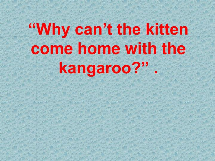 """Why can't the kitten come home with the kangaroo?"" ."