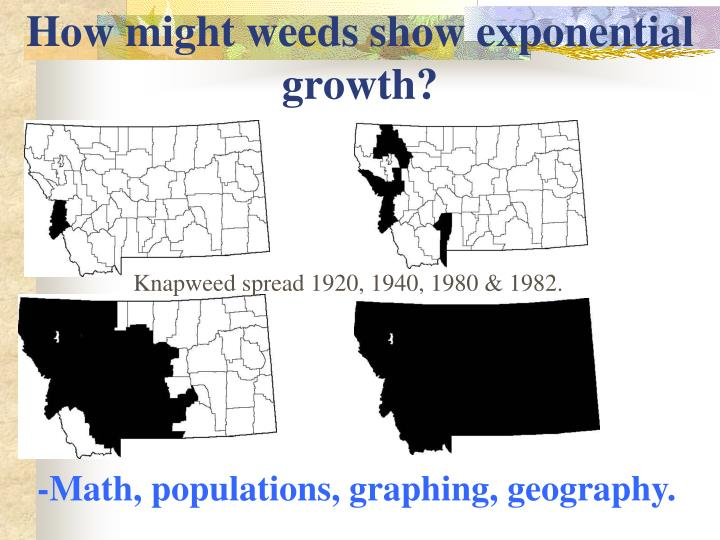 How might weeds show exponential growth?