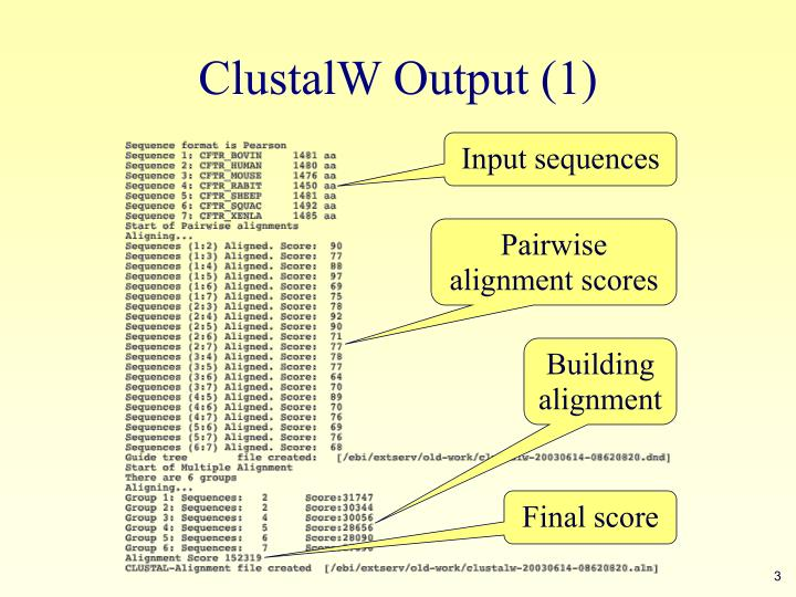 ClustalW Output (1)