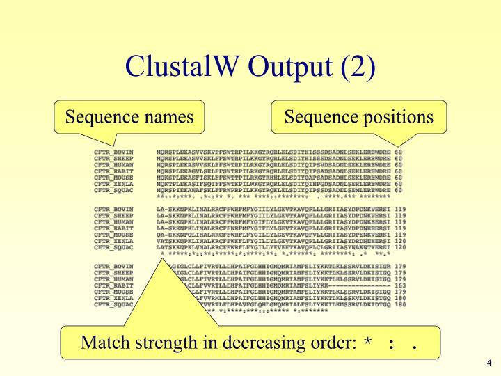 ClustalW Output (2)