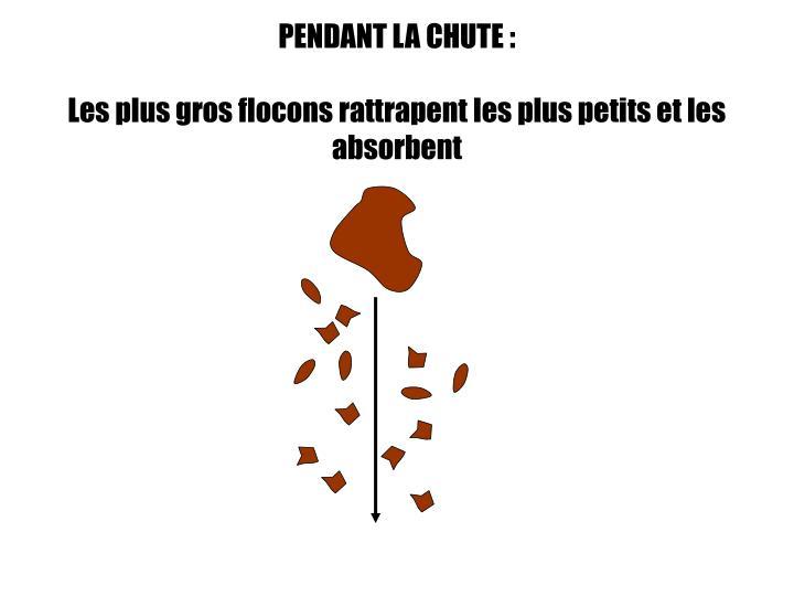 PENDANT LA CHUTE:
