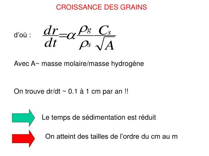 CROISSANCE DES GRAINS