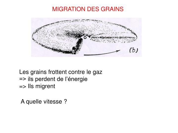 MIGRATION DES GRAINS
