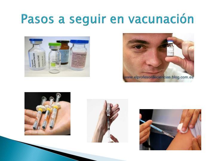 Pasos a seguir en vacunación