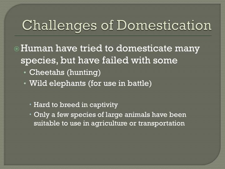Challenges of Domestication