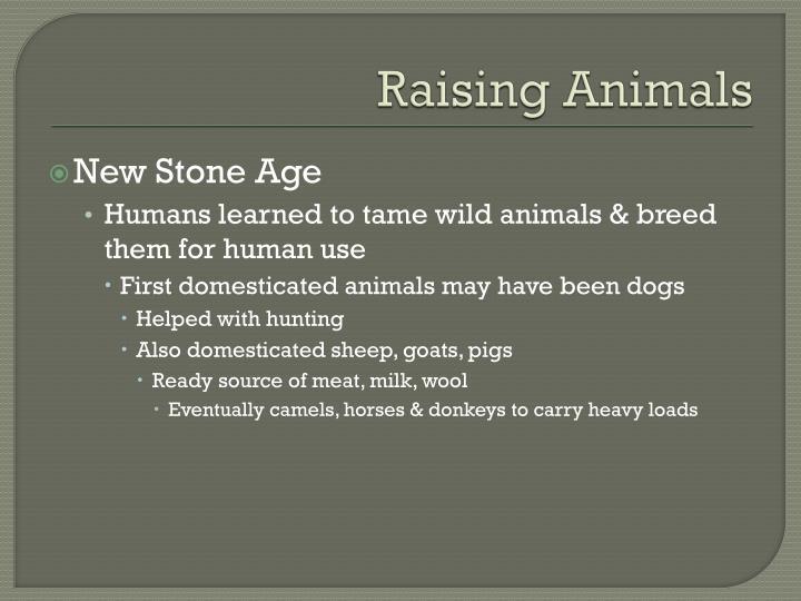 Raising Animals