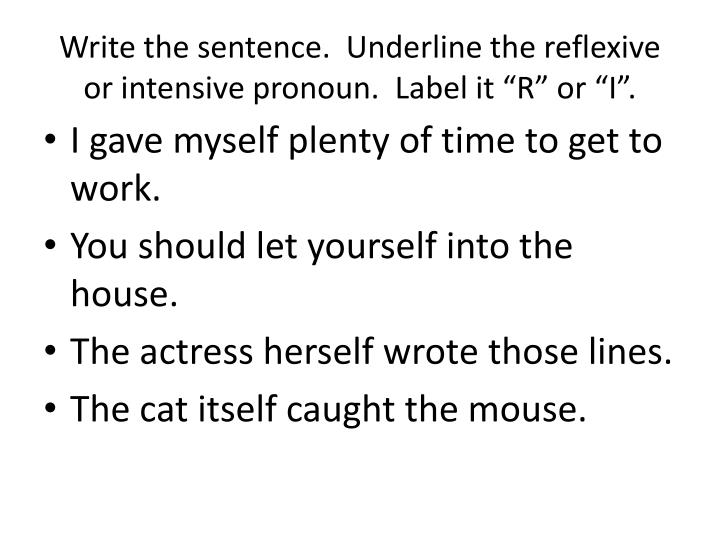 "Write the sentence.  Underline the reflexive or intensive pronoun.  Label it ""R"" or ""I""."