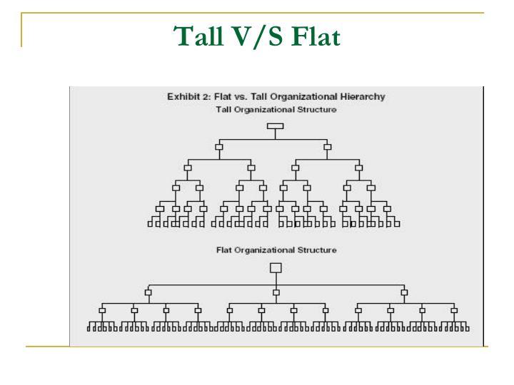 Tall V/S Flat