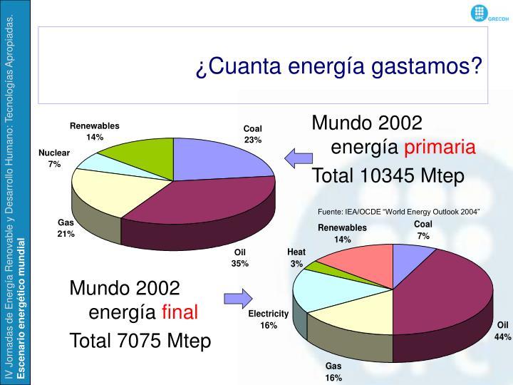 ¿Cuanta energía gastamos?